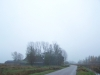 grster_20121110_018