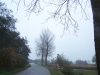 grster_20121110_019