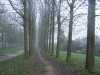 grster_20121110_040